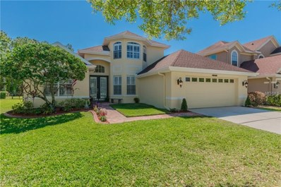 11672 Renaissance View Court, Tampa, FL 33626 - MLS#: T2935864