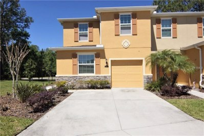 13939 River Willow Place, Tampa, FL 33637 - MLS#: T2936081