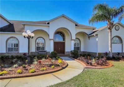 13241 Emerald Acres Avenue, Dover, FL 33527 - MLS#: T2936085