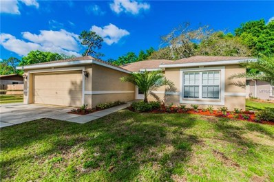 6633 Hone Street, New Port Richey, FL 34653 - MLS#: T2936119