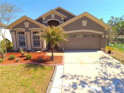 6843 Bluff Meadow Court, Wesley Chapel, FL 33545 - #: T2936640