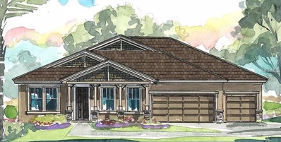 8117 Water Color Drive, Land O Lakes, FL 34638 - MLS#: T2937130