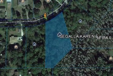Coral Vine Ln, Wesley Chapel, FL 33544 - MLS#: T2937322