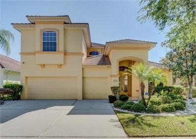 13801 Springer Lane, Tampa, FL 33625 - MLS#: T2937405