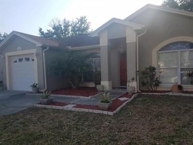 10161 Cedar Dune Drive, Tampa, FL 33624 - MLS#: T2937415