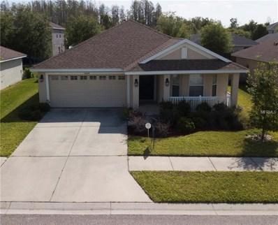 9644 Jaybird Lane, Land O Lakes, FL 34638 - MLS#: T2937471