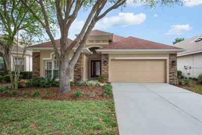 10228 Evergreen Hill Drive, Tampa, FL 33647 - MLS#: T2937972