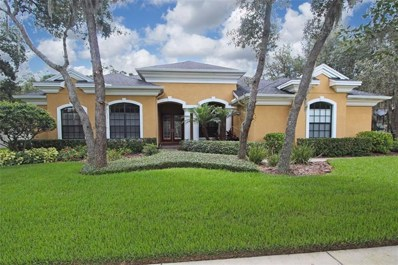 5716 Ternwater Place, Lithia, FL 33547 - MLS#: T2938352