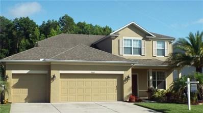 5389 Shasta Daisy Place, Land O Lakes, FL 34639 - MLS#: T2938376