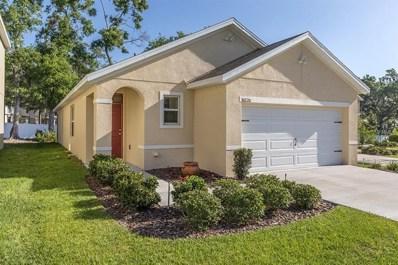 10220 Hawk Storm Avenue, Tampa, FL 33610 - #: T2939370
