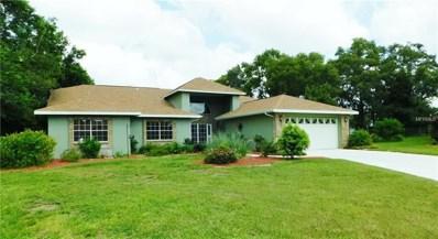 1275 Caballero Court, Spring Hill, FL 34608 - MLS#: T2939419