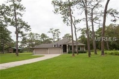 15610 Phillips Road, Odessa, FL 33556 - MLS#: T3100402