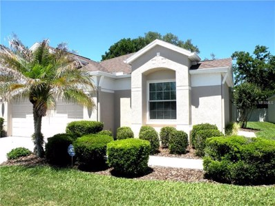 26543 Whirlaway Terrace, Wesley Chapel, FL 33544 - MLS#: T3101147
