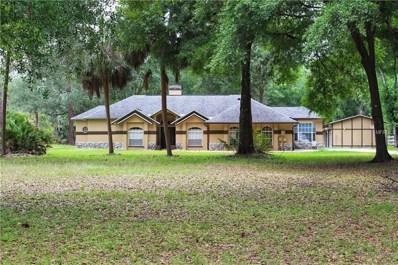8115 Shenandoah Run, Wesley Chapel, FL 33544 - MLS#: T3101219