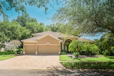 1503 Brilliant Cut Way, Valrico, FL 33594 - MLS#: T3101340