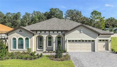 2820 Valencia Ridge Drive, Valrico, FL 33596 - MLS#: T3102164