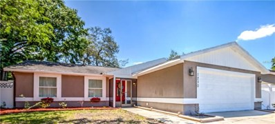 1230 Edgerton Drive, Valrico, FL 33594 - MLS#: T3102165