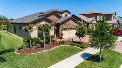 13213 Fawn Lily Drive, Riverview, FL 33579 - MLS#: T3102556