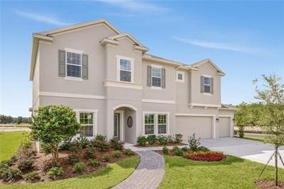 12207 Sabal Palmetto Place, Orlando, FL 32824 - #: T3103050
