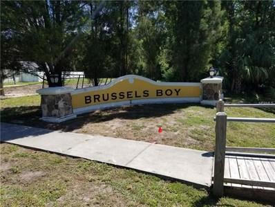 11314 Brussels Boy Lane, Riverview, FL 33578 - MLS#: T3103367