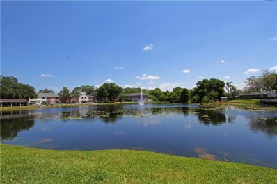 13812 Orange Sunset Drive, Tampa, FL 33618 - MLS#: T3103413