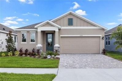 13907 Kingfisher Glen Drive, Lithia, FL 33547 - #: T3104096