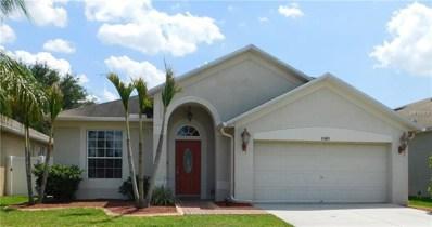 11411 Village Brook Drive, Riverview, FL 33579 - MLS#: T3104190