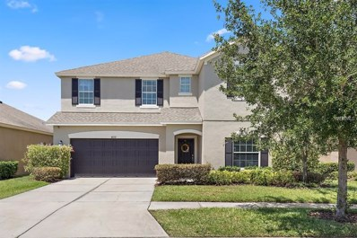 8632 Turnstone Shore Lane, Riverview, FL 33578 - MLS#: T3104329