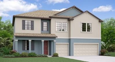 11708 Bearpaw Shale Street, Riverview, FL 33579 - MLS#: T3104338