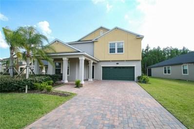 19478 Paddock View Drive, Tampa, FL 33647 - MLS#: T3104446