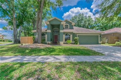12841 Big Sur Drive, Tampa, FL 33625 - MLS#: T3104537