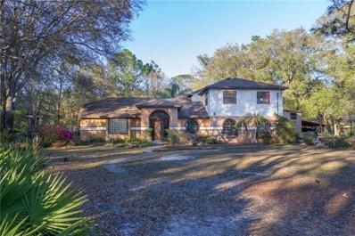 26019 Balsawood Court, Wesley Chapel, FL 33544 - MLS#: T3104701