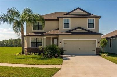 11832 Valhalla Woods Drive, Riverview, FL 33579 - MLS#: T3105254
