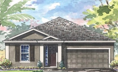 4111 Welling Terrace, Land O Lakes, FL 34638 - MLS#: T3105414