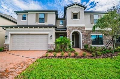 19216 Briarbrook Drive, Tampa, FL 33647 - #: T3105431