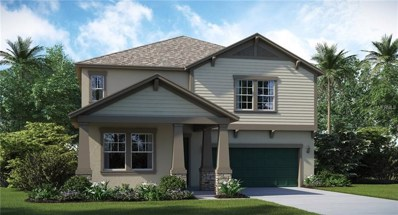 13903 Roseate Tern Lane, Riverview, FL 33579 - MLS#: T3105849