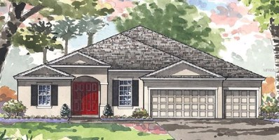 21987 Butterfly Kiss Drive, Land O Lakes, FL 34637 - MLS#: T3106849