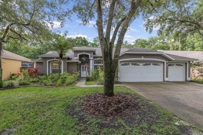 10602 Chambers Drive, Tampa, FL 33626 - MLS#: T3106865