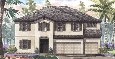 21946 Butterfly Kiss Drive, Land O Lakes, FL 34637 - MLS#: T3106891