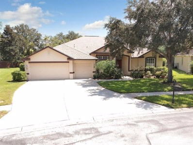 22909 Collridge Drive, Land O Lakes, FL 34639 - MLS#: T3106915