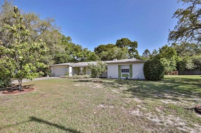 622 Marphil Loop, Brandon, FL 33511 - MLS#: T3107292