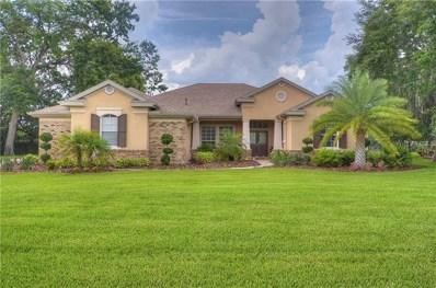 6104 Wild Orchid Drive, Lithia, FL 33547 - MLS#: T3107294