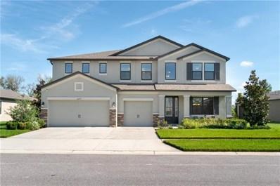 18679 Cortes Creek Boulevard, Spring Hill, FL 34610 - #: T3107671