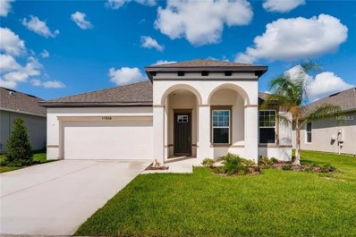 11934 Greenchop Place UNIT 458, Riverview, FL 33579 - MLS#: T3107913