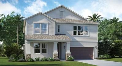 10808 Great Cormorant Drive, Riverview, FL 33579 - MLS#: T3107936