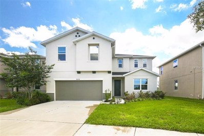10538 Medford Lake Drive, Riverview, FL 33578 - #: T3109059
