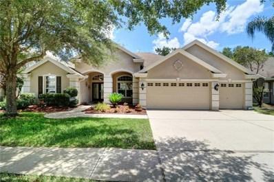 19225 Autumn Woods Avenue, Tampa, FL 33647 - MLS#: T3109401
