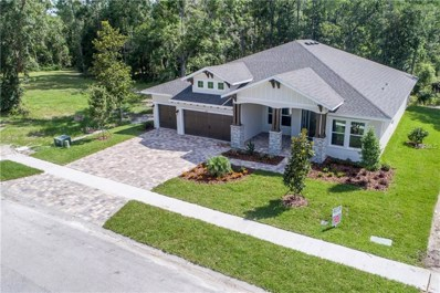 4006 Cove Lake Place, Land O Lakes, FL 34639 - MLS#: T3109533