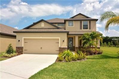 11853 Valhalla Woods Drive, Riverview, FL 33579 - MLS#: T3109580