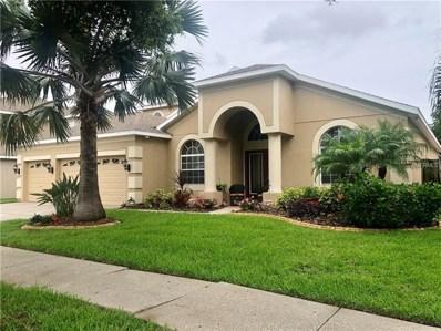 11436 Dutch Iris Drive, Riverview, FL 33578 - MLS#: T3109667